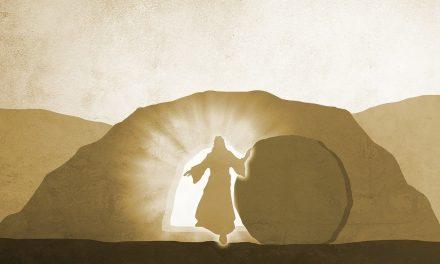 La identidad de Jesús – Por Hno. Fredy Chica